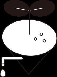 bn-leaf-1